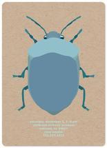 beetle time by elena diaz