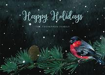 A Chirpy Holiday Greeti... by Jenny Rajan Valiaveetil