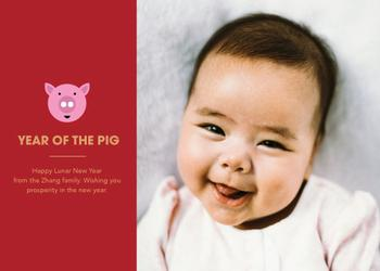 Modern Year of the Pig