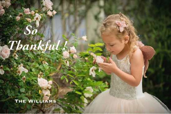holiday photo cards - Thankful ! by Shreya D