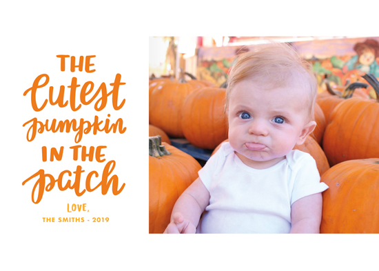 holiday photo cards - Cutest Pumpkin by Little Print Design