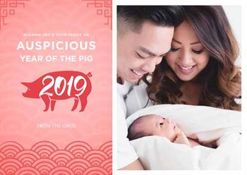 Lunar Year Of The Pig