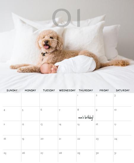 calendars - Modern Neutral by Akweley Creative