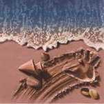 Handy Sandy Beach by John Sposato