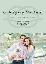 We're Tying the Knot by Alexandra Cohn