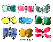 Butterfly, Butterfly...... by Michele Norris