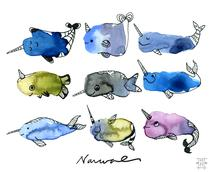 Nine Nifty Narwhals by Michele Norris