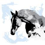 Grey Horse on Blue by Henri Martinez