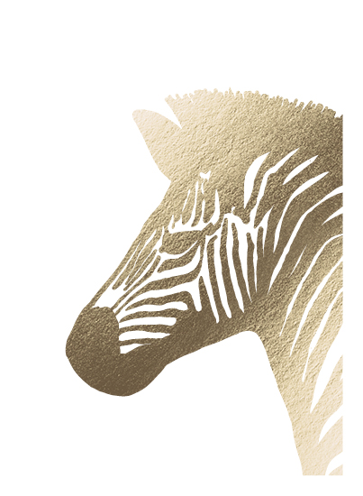 art prints - Stripes the Zebra by Alicia Youngken