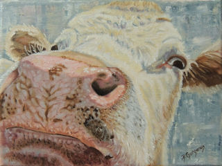 art prints - Nosey Cow by Beverly Gurganus