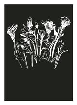 Sweet Floral Dreams by Lindsay Davis
