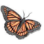 Monarch by Saraya Lyons