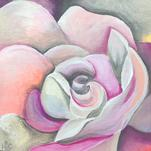 Delicate Pink Rose by Hannah Lowe Corman