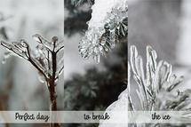 Beauty of ice by Metka Slamic