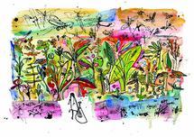 The Wild Backyard by Charlotte Noruzi