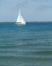 White Sails by Ashley Slade Mast