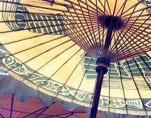 Vietnamese Umbrella by Ashley Slade Mast