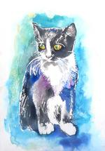 Cat in a Blue Mood by Emma Kaufmann