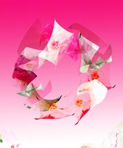 pinkscape by Elle Youm