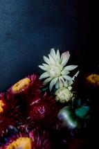 Dark Fall Flowers by Katie Buckman