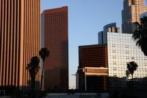 Los Angeles by Raquel Guzman