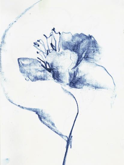 Blue Graphite Bloom