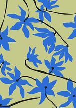 Homage to Matisse by Sonya Percival