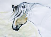 Horse with white neck by Sylvia Rudert