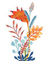 Botanica Wonder by Dora Cuenca