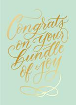 Bundle Of Joy by Ilana Griffo