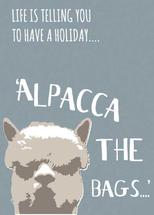 Alpacca holiday by Bethan Osman