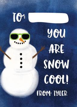 Snow Cool