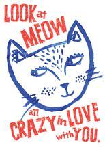 Look at Meow by Faiza Khan