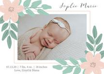 Blushing Baby by Jules Moore