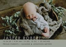 Modern Baby by Lisa Cappello