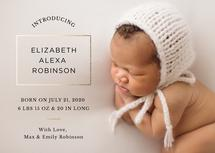 Introducing Baby by Emily Schramm