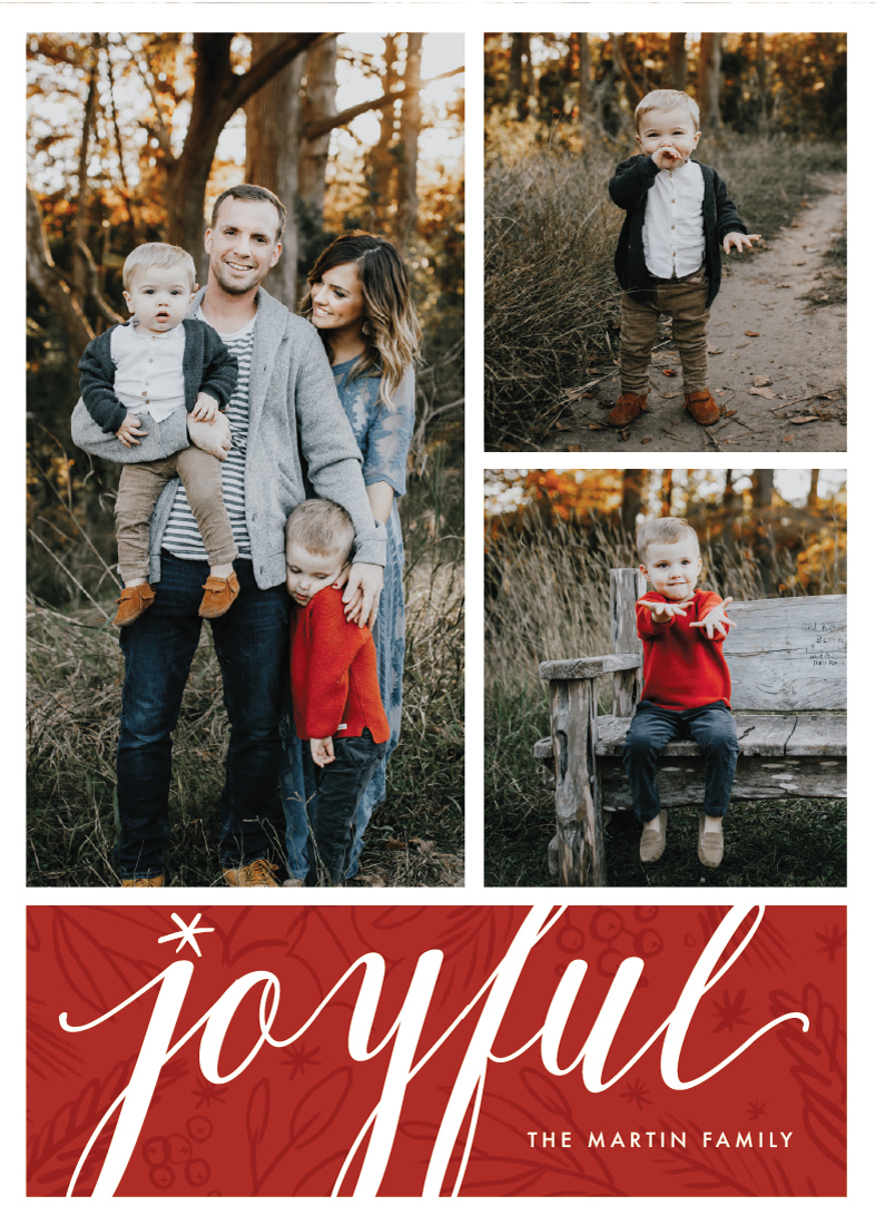 holiday photo cards - Branching Out by Kayla King