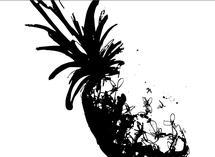 wild pineapple by Christina Oertel
