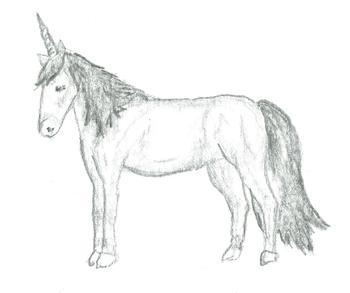 Sketched Magic
