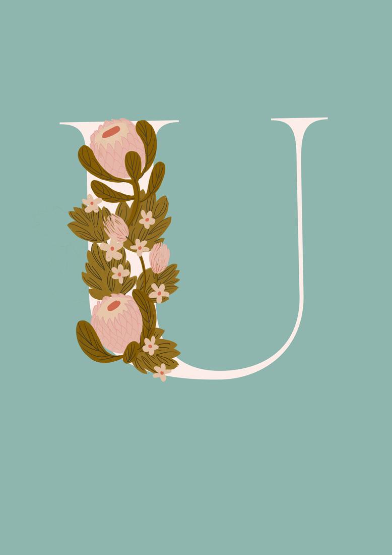 art prints - Protea Letter U by hayleypauldesign