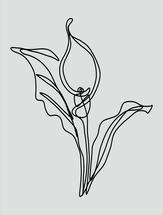 Calla Lily Flower by Tishya Oedit