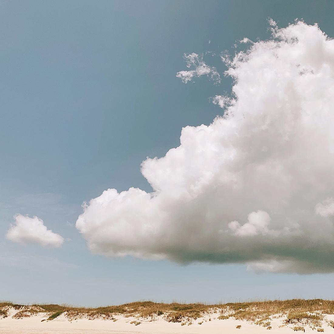 art prints - Sea Turtle In The Sky by ALICIA BOCK