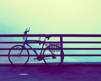 Misty Beach Bike