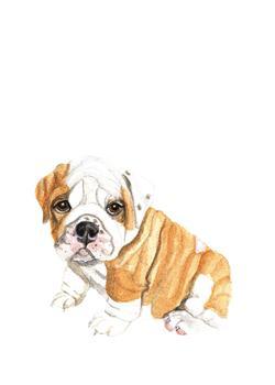 Bulldog Puppy Pal