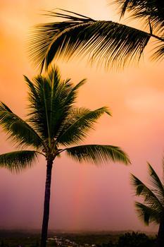 Kailua Glow