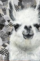 mr. llama by Ashley Lane