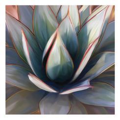 Succulent pastels