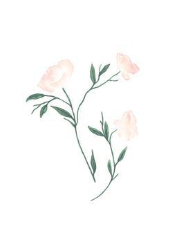 bloom II