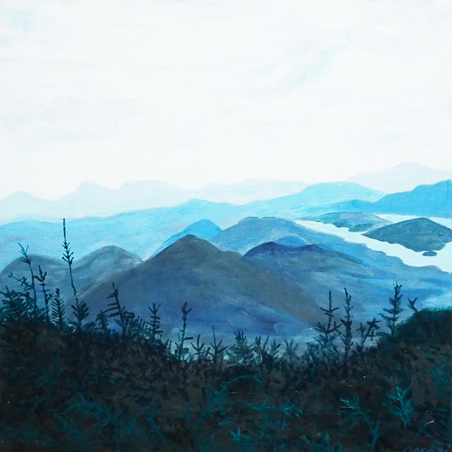 art prints - Blue Adirondack by Meredith Arcari