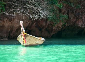Boat under tree